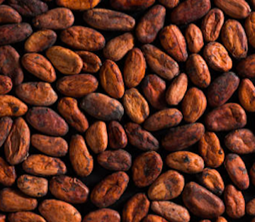 cacao-bio-bio-rosan